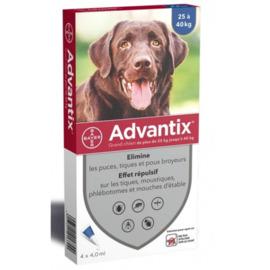 Advantix grand chien 25 à 40kg - 4 pipettes - 16.0 ml - bayer -145878