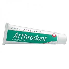 Arthrodont pâte gingivale - 80g - 80.0 g - pierre fabre -192955