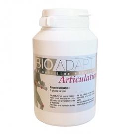 Articulations - bioadapt -194414