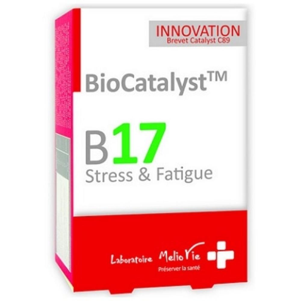 B17 Stress et Fatigue - Biocatalyst -202621
