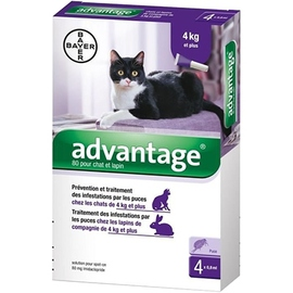 Bayer advantage 80 anti-puces chat et lapin +4kg - 4 pipettes - 3.0 ml - bayer -191289