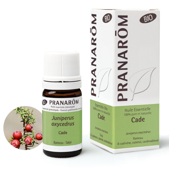 Cade Pranarom-229767