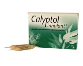 Calyptol inhalant - 10 ampoules x - 5.0 ml - laboratoires techni-pharma -193107