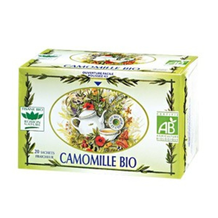 Camomille Romon nature-16186