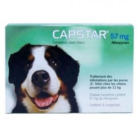 Capstar 57mg chiens de plus de 11kg - novartis -190985