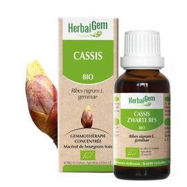 Cassis bio 30 ml - 30.0 ml - herbalgem - herbalgem -189269