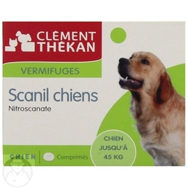 CLEMENT THEKAN Scanil Chiens - Clement-thekan -144197