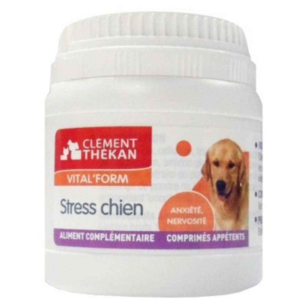 Clement thekan vital form stress chien - clement-thekan -146441