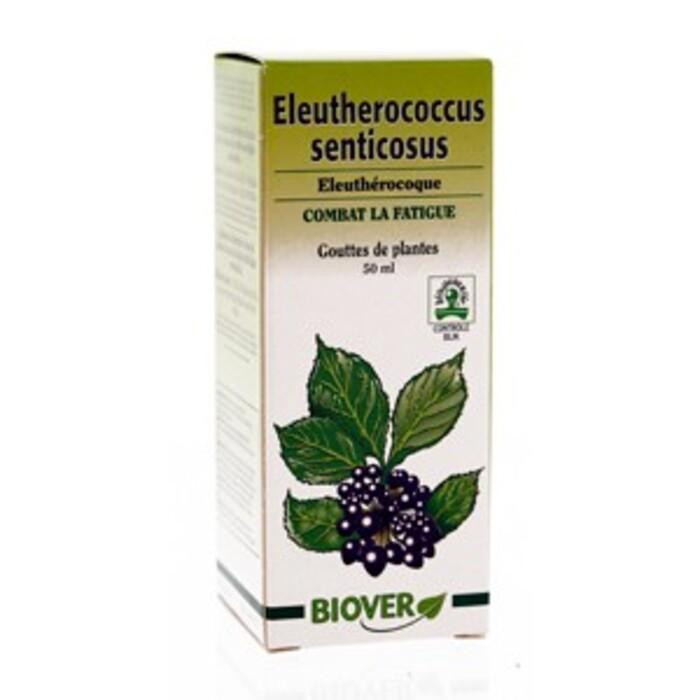 Eleutherococcus senticosus (eleuthérocoque) bio Biover-8966