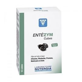 Entezym - 12 cubes - divers - nutergia -189633