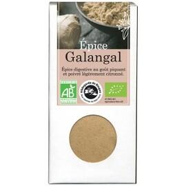 Epice galangal bio - boîte de 35 g - divers - florisens -135774