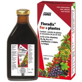 Floradix fer + plantes - 500.0 ml - toniques aux plantes sans alcooll - salus Vitalité et Energie-120545
