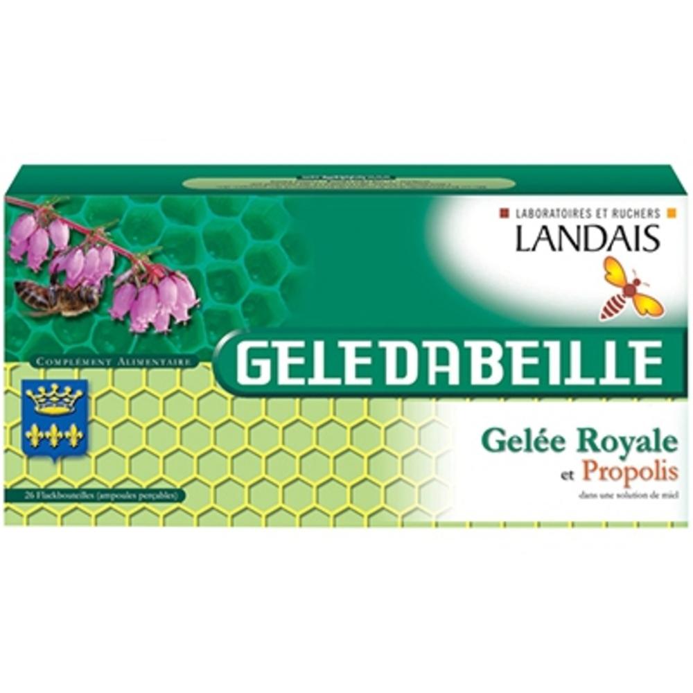 Geledabeille gelée royale - 26 ampoules x 5ml - laboratoires landais -205917