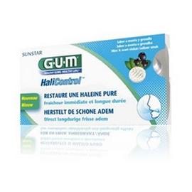 Gum halicontrol 10 pastilles sans sucre - gum -196682
