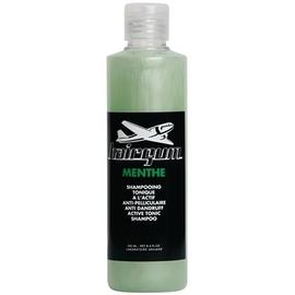 Hairgum menthe shampooing anti-pelliculaire - 250ml - hairgum -205457