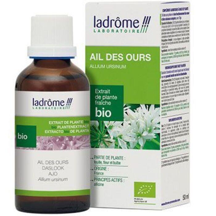 Ladrome extrait de plante fraîche bio ail des ours Ladrôme-7814