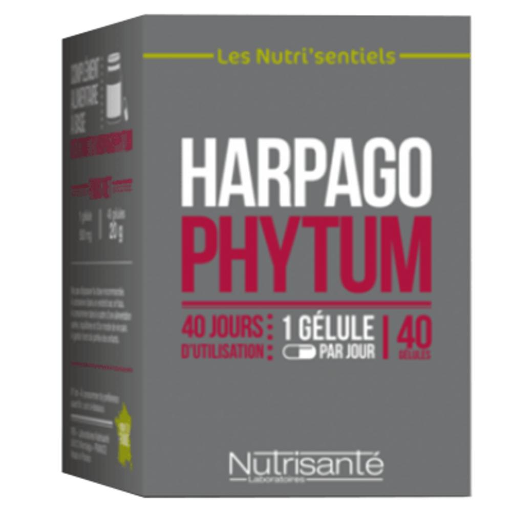 Nutrisante harpagophytum 40 gélules Nutrisanté-219597