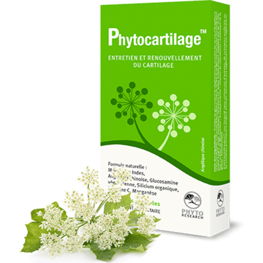 Phytoresearch phytocartilage 60 gélules végétales - phytoresearch -216735