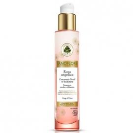 Sanoflore rosa angelica concentré d'eveil re-hydratant - 30.0 ml - sanoflore -146890