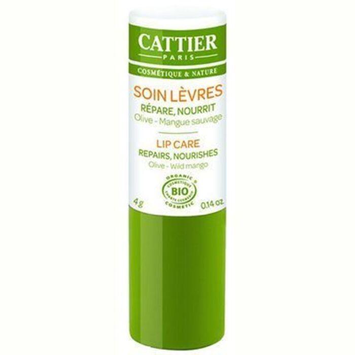 Soin lèvres bio 4g Cattier-134599