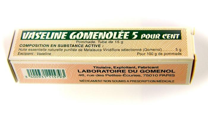 Vaseline gomenolee 5% - 15g Laboratoire du gomenol-193071