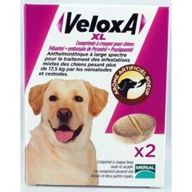 Veloxa xl vermifuge chien comprimé à croquer x2 - merial -226146