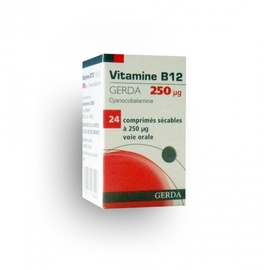 Vitamine b12 250 microgrammes - 24 comprimés - laboratoires gerda -194278